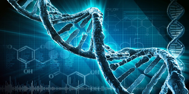 DNA: A Glorious Marvel of Creation