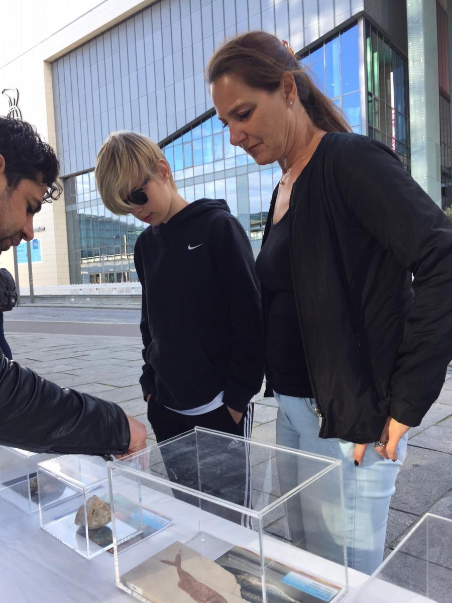 Kopenhag Fosil Sergisi