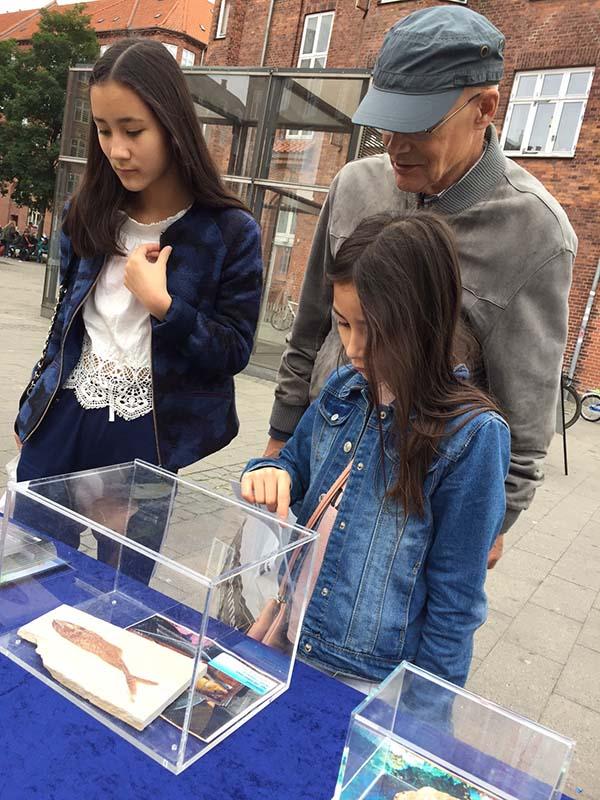 Danimarka'da Fosil Sergisi