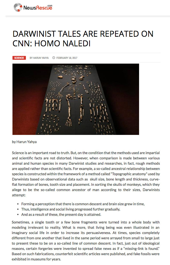 Darwinist Tales Are Repeated on CNN: Homo Naledi