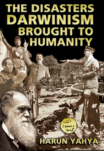 a look at charles darwin and imperialism ideologies Charles darwin, social darwinism, and imperialism essay emergence of feminism and the creation of new political ideologies charles darwin, social darwinism.