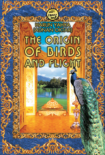 origin of birds notes