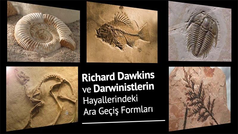 Richard Dawkins ve Darwinistlerin Hayallerindeki Ara Geçiş Formları