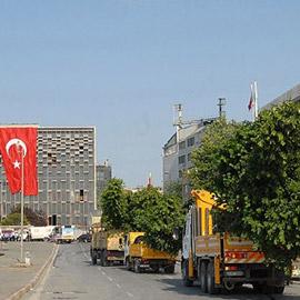 Gezi Parkı'nın hızla ağaçlandırılması çok güzel