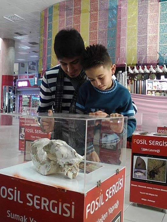 hunat çarşısı kayseri fosil sergisi