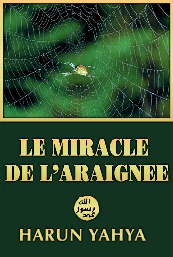 Le Miracle de l'Araignée L_araignee